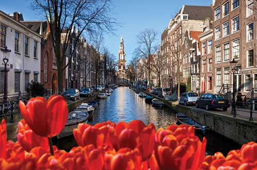 Experience the tulip blooms throughout Holland, the Netherlands, and Canada with Le Boat