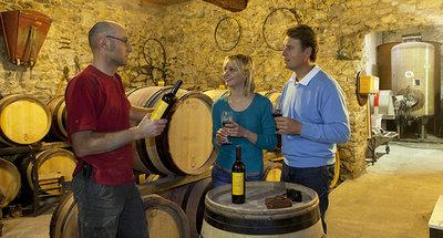 Wine tasting in Tannay
