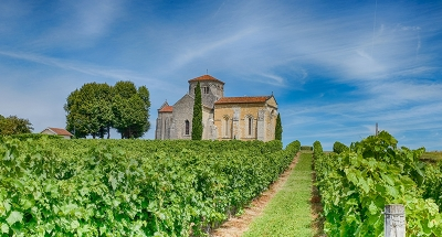 Historic chapel in the vineyards of Cognac
