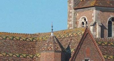 Elaborate roof over Burgundian town