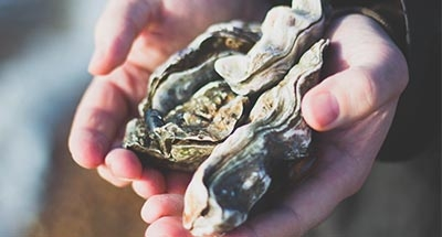 Man holding Oysters