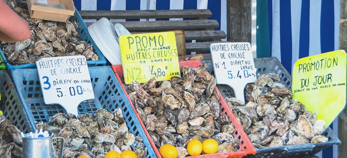 Oysters in market in Brittany